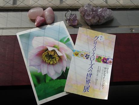 ブログ用09017.JPG